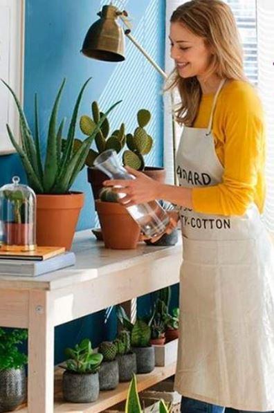 Arma un calendario para un mejor control y evitar que alguna de las plantas que ya tienes bajo tu cuidado colapse por falta o exceso de agua.