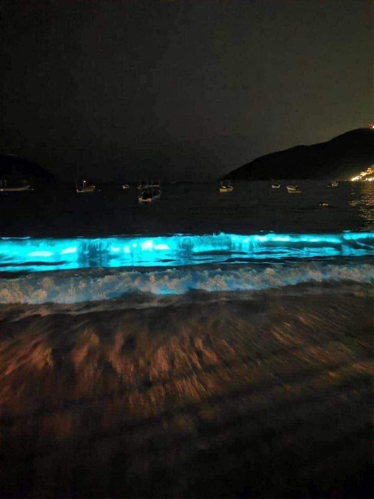 bioluminiscencia puerto marquez acapulco