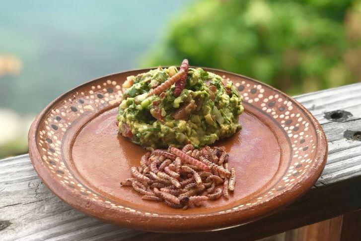 chinicuiles en la gastronomía mexicana