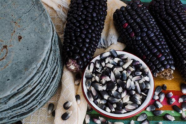 Abrirán el primer Museo de gastronomía mexicana en la CDMX