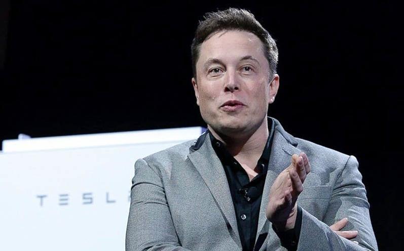 tesla piloto automático esquiva animal carretera Elon Musk