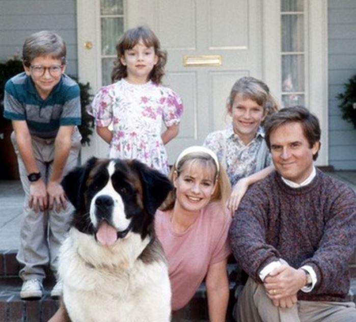 5 perros más famosos del espectáculo