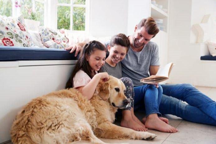 beneficios de tener un animal de compañía