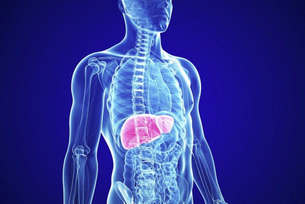 tipos hepatitis cómo diferenciarlas síntomas