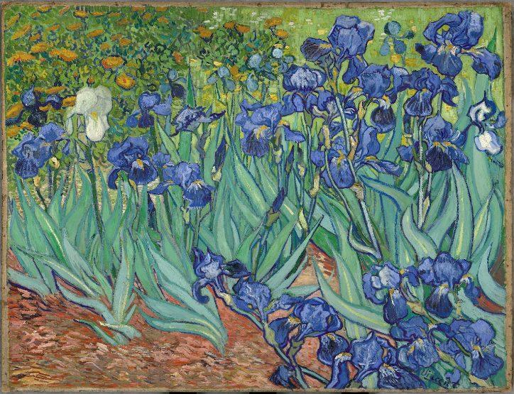 Van Gogh curiosidades vida