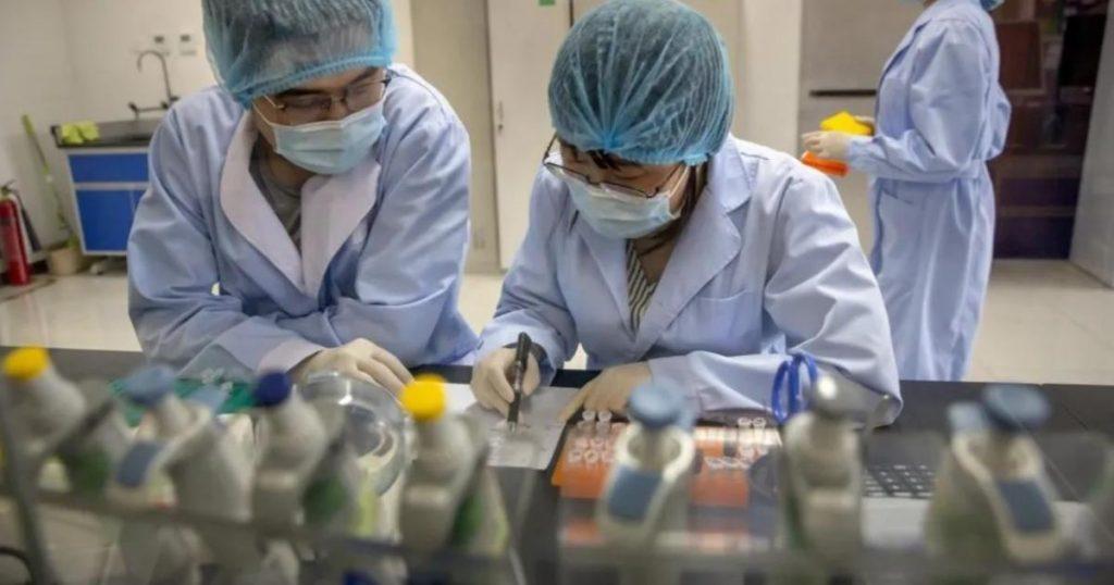 Bacteria-escapa-laboratorio-China-brucelosis-4