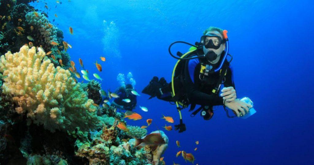 Triángulo-de-Coral-Filipinas
