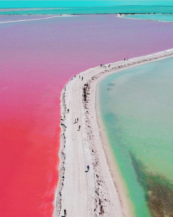 Coloradas Yucatán qué hacer