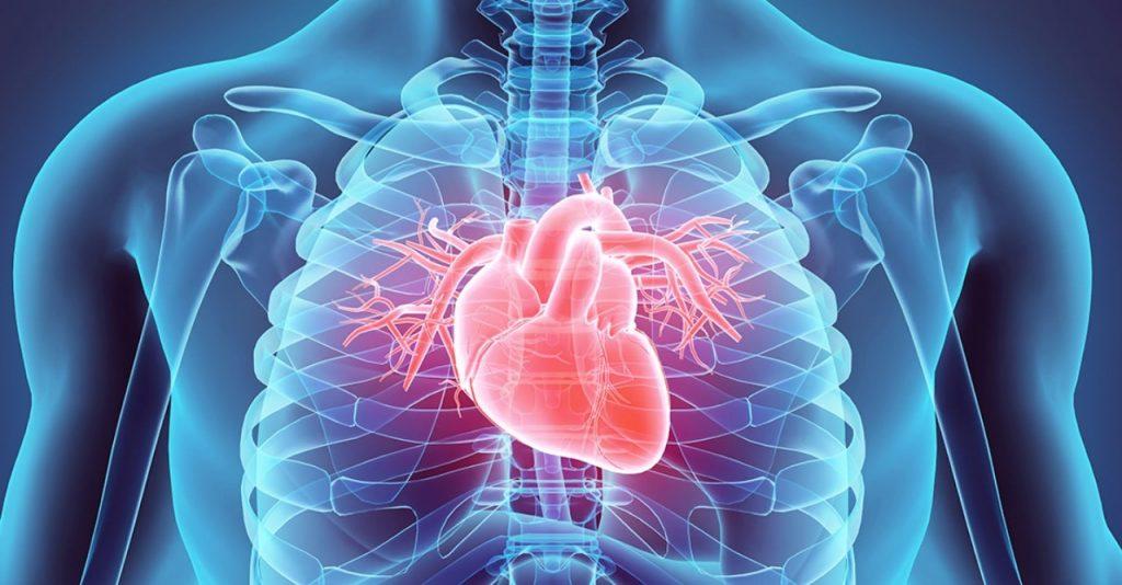Covid 19 qué daños corazón