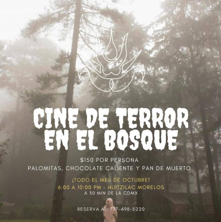 maratón cine terror bosque morelos cdmx