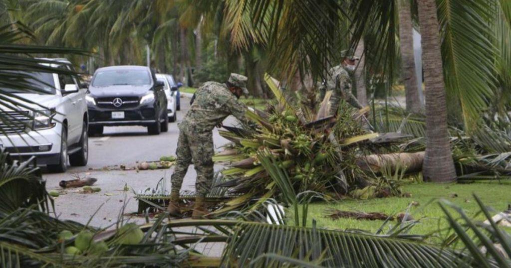 Árboles-caídos-Cancún-reto-Planta-un-árbol-4
