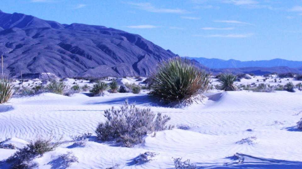 Desierto-nevado-Cuatro-Ciénegas