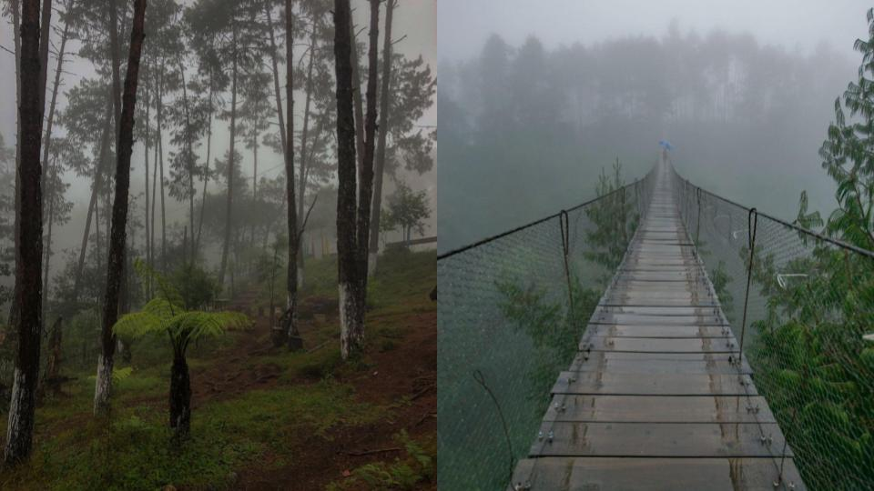 Honey-Puebla-cascadas-y-neblina-3
