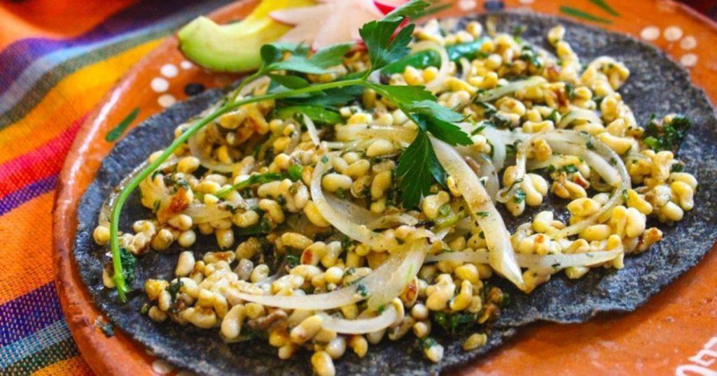 Insectos-ricos-gastronomía -mexicana-Escamoles