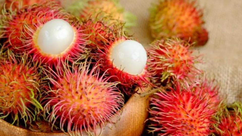 Rambutan-diferencias-frutas-tropicales-3