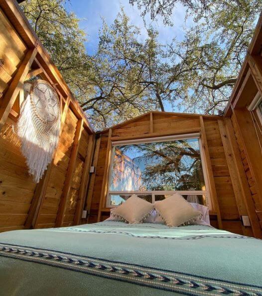 Huamuchil Tree House: la cabaña sin techo que todos quieren visitar