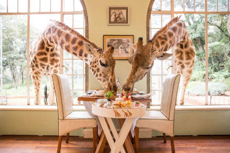 Los restaurantes más raros del mundo