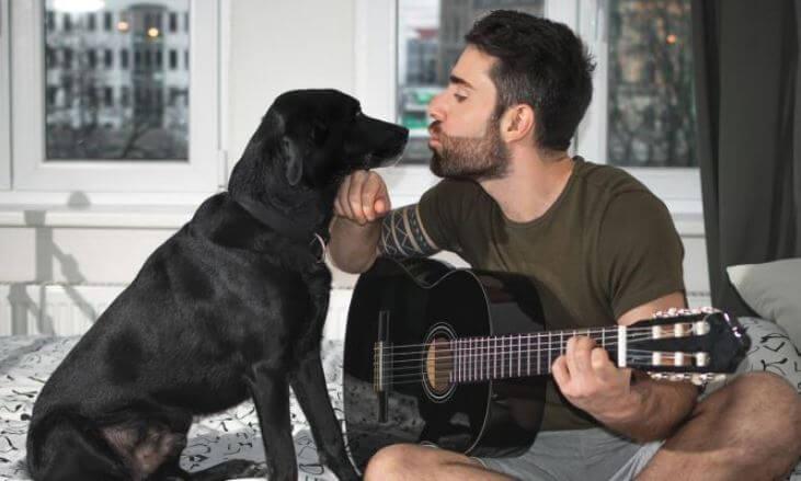 ¿Cuál es la música que más les gusta a los perros?
