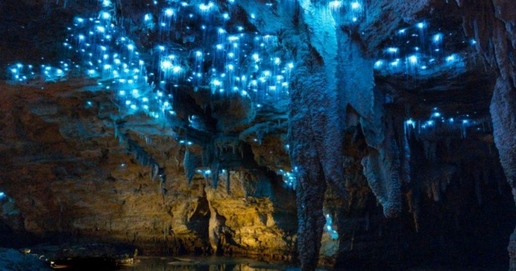 Cuevas-de-Waitomo-Nueva-Zelanda-2