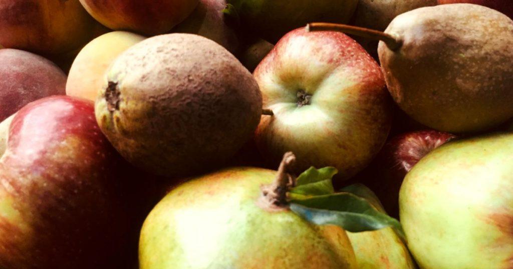 Platillos-tradicionales-mexicanos-peligro-de-extincion-duraznos-manzanas-peras
