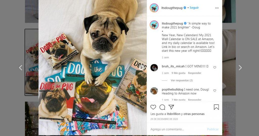 Doug-the-Pug-perritos-mas-famosos-Instagram