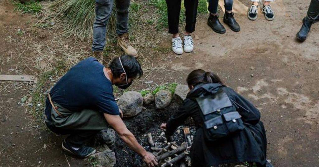 CUBO-picnic-bosque-preparacion-comida