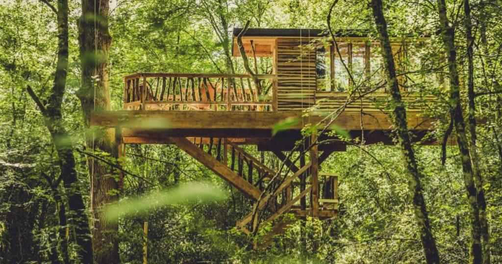 Cabanas-elevadas-en-el-bosque-2