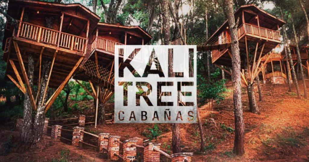 Kali-Tree-Cabanas-elevadas-bosque