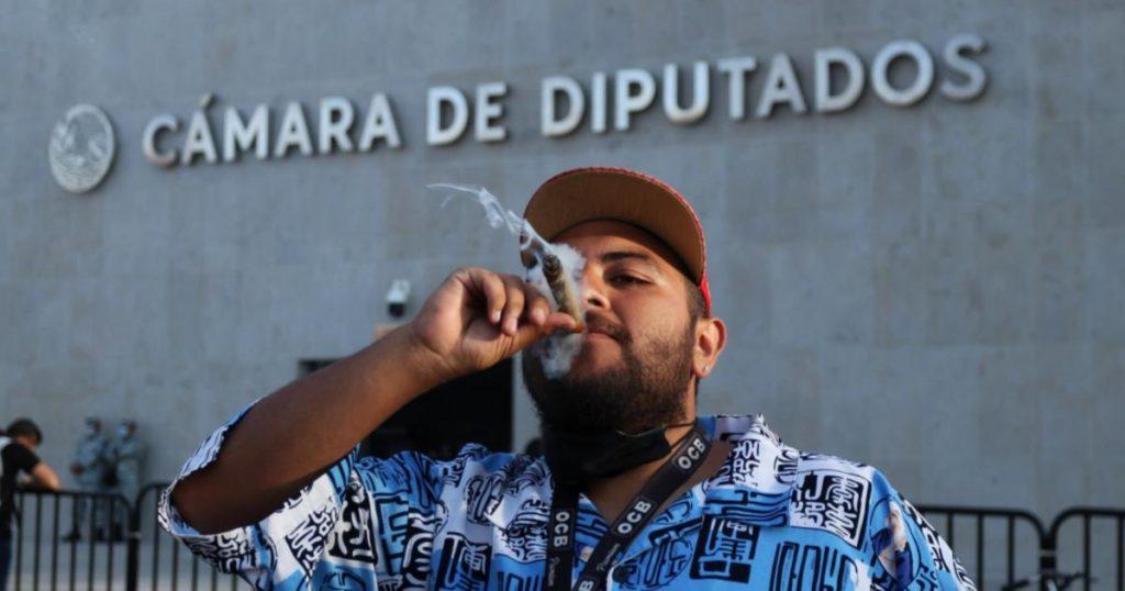 Diputados-aprobaron-en-lo-particular-uso-ludico-de-marihuana-en-mexico-3