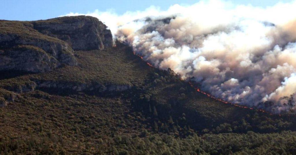 Incendio-forestal-en-Coahuila-y-Nuevo-Leon-ya-consumio-2-mil-hectareas-4