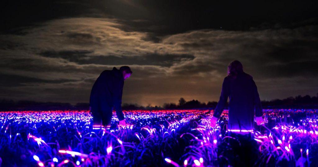 grow-Daan-Roose-4gaarde-obra-luces-led-que-estimula-crecimiento-de-cultivos