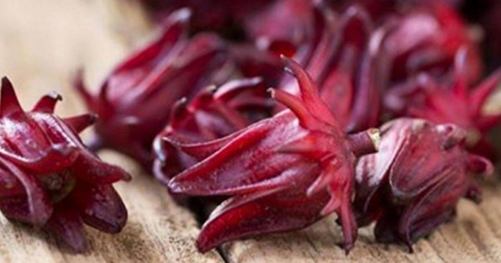 Flor-de-jamaica-pigmento