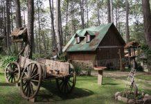 Mazamitla-Pueblo-Magico-cabanas-bosque-y-gastronomia