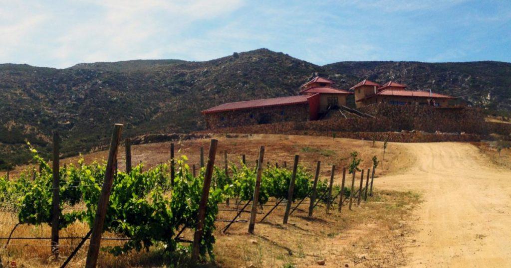 Vinedos-Las-Nubes
