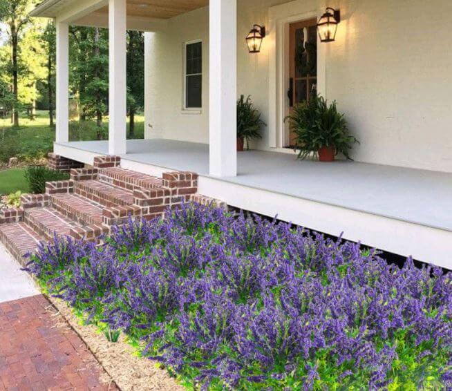 plantas-para-decorar-patios-y-jardines-lavanda