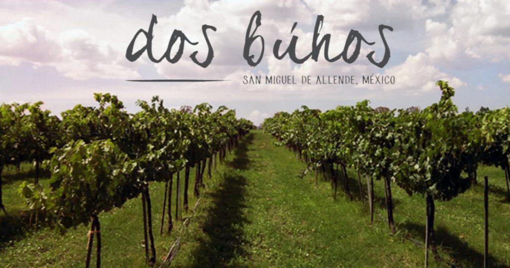 Bodega-Dos-Buhos