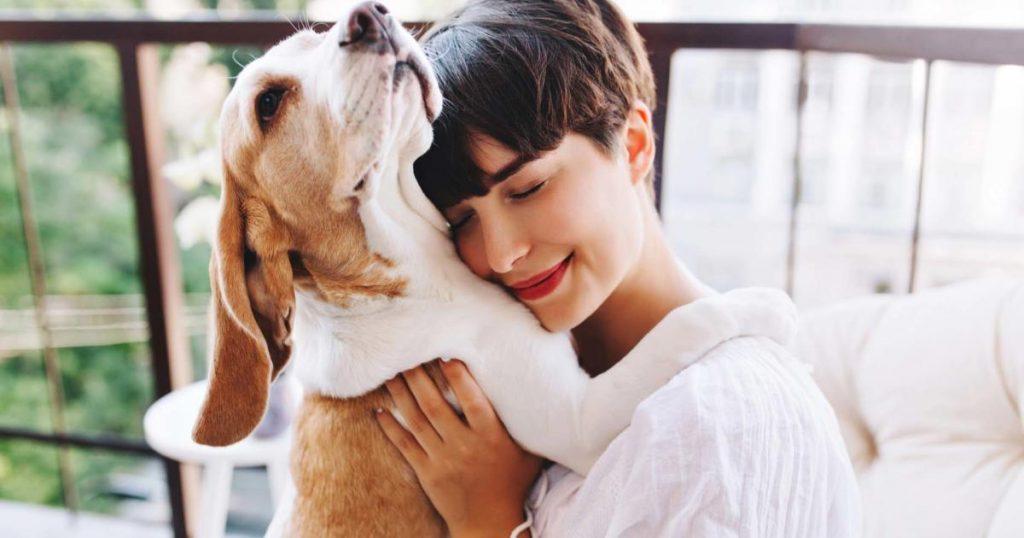 Eliminar-olor-a-perro-de-casa-consejos-practicos-recomendaciones-2