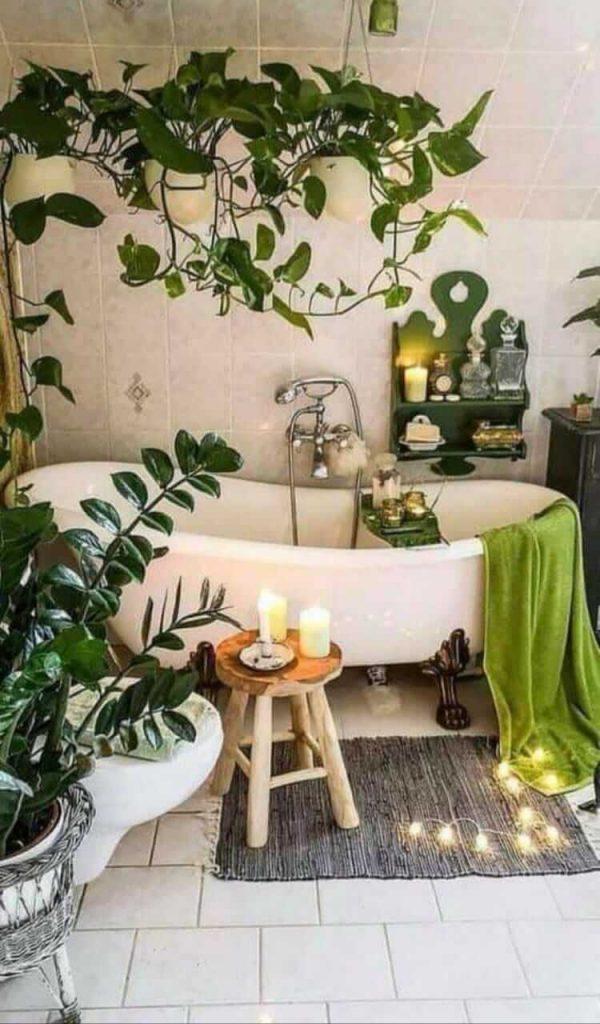 plantas-para-decorar-tu-bano-Ciudad-Trendy