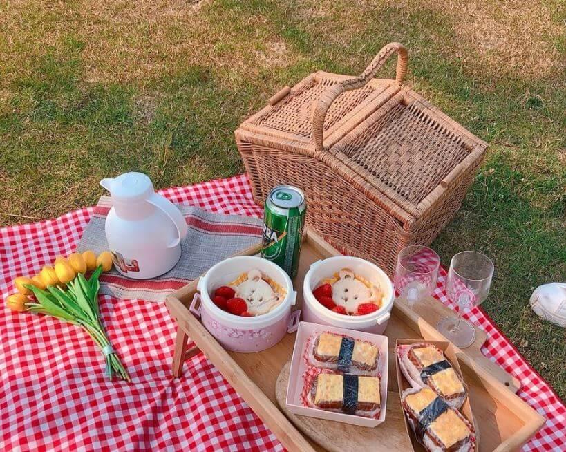 que-debe-llevar-una-canasta-de-picnic-mantel-cuadricular