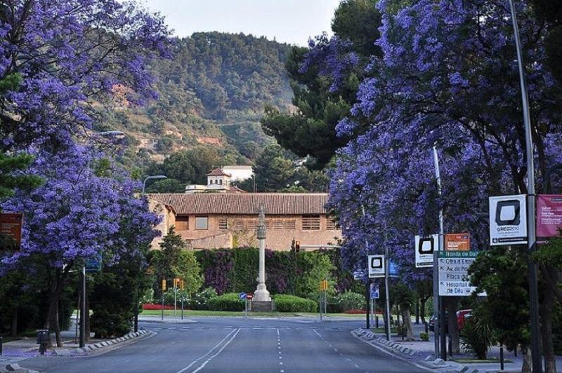 El barrio de Pedralbes