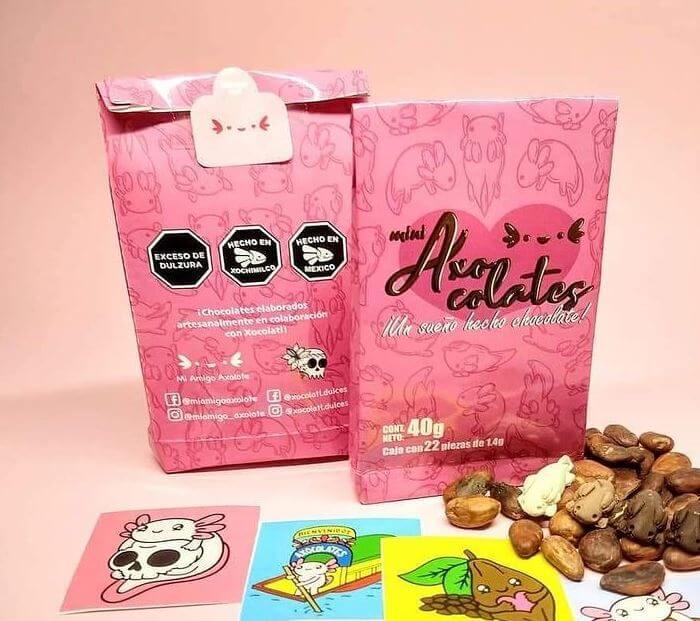 chocolates-artesanales-en-forma-de-axolotes-xocolatl-Ciudad-Trendy