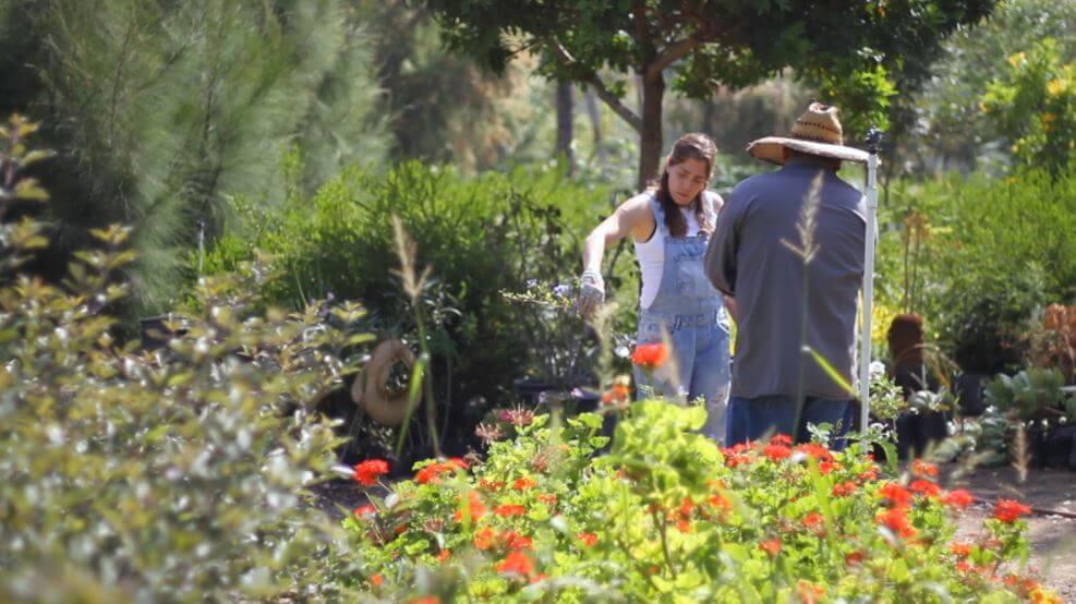 5-lugares-increibles-que-visitar-en-Tijuana-jardin-binacional